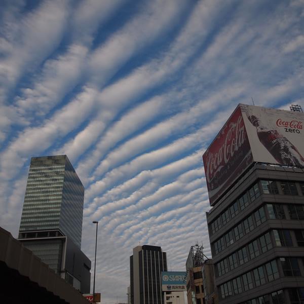 空に筋の雲がわんさか出た。